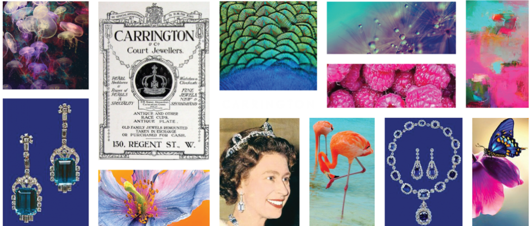 The Carrington Collection : A History